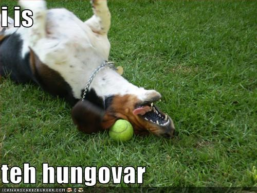 i is  teh hungovar