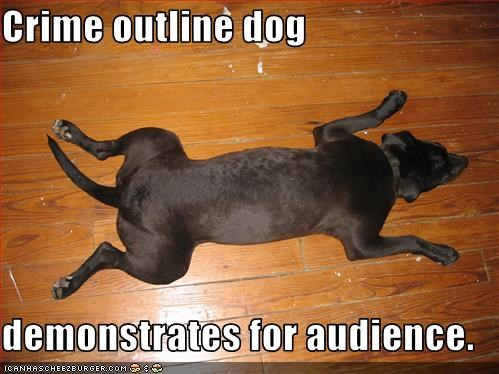 Crime outline dog  demonstrates for audience.