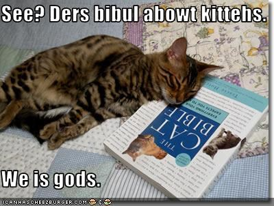 See? Ders bibul abowt kittehs.  We is gods.