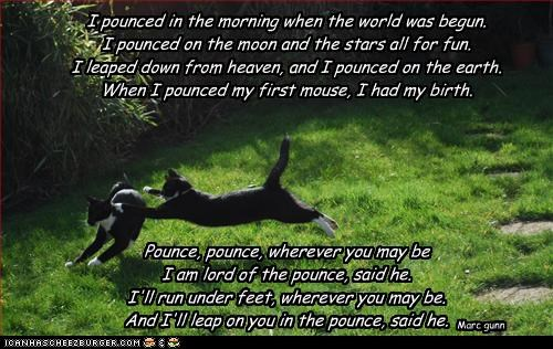 I pounced in the morning when the world was begun. I pounced on the moon and the stars all for fun. I leaped down from heaven, and I pounced on the earth. When I pounced my first mouse, I had my birth.       Pounce, pounce, wherever you may be I am lord o