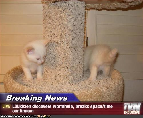 Breaking News - LOLkitten discovers wormhole, breaks space/time continuum