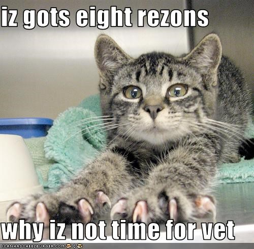 iz gots eight rezons  why iz not time for vet