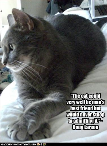 """The cat could very well be man's best friend but would never stoop to admitting it."" - Doug Larson"