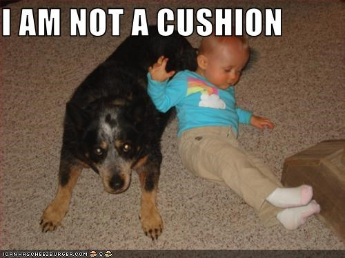I AM NOT A CUSHION