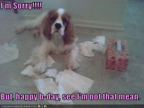I'm Sorry!!!!  But, happy b-day, see I'm not that mean.