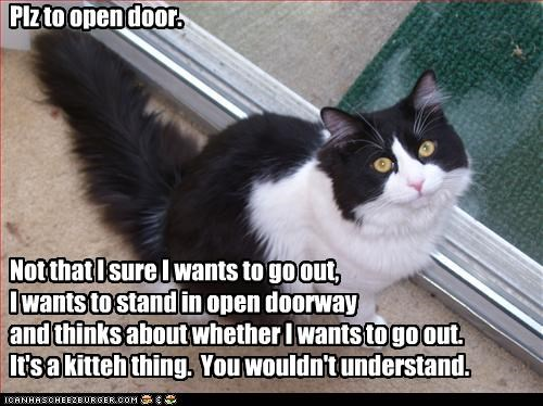 Plz to open door.        Not that I sure I wants to go out,  I wants to stand in open doorway  and thinks about whether I wants to go out. It's a kitteh thing.  You wouldn't understand.