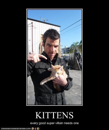 heros,kitten,movies,sci fi,Spock,Star Trek,TV,Zachary Quinto