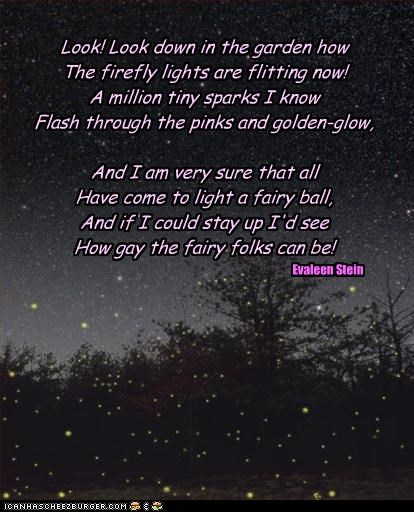 Look! Look down in the garden how The firefly lights are flitting now! A million tiny sparks I know Flash through the pinks and golden-glow,  And I am very sure that all Have come to light a fairy ball, And if I could stay up I'd see How gay the fairy fol