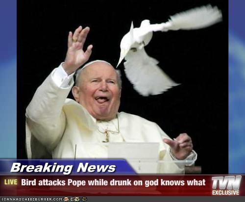Serhoş Papa'ya kuş saldırısı