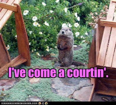 I've come a courtin'.