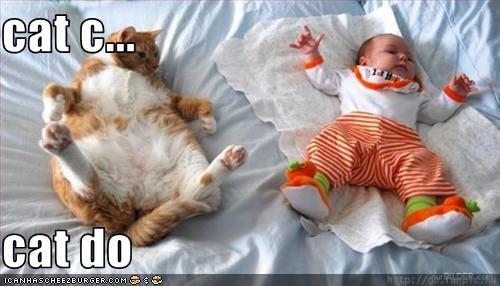 cat c...  cat do