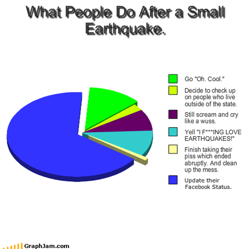 What People Do After a Small Earthquake.