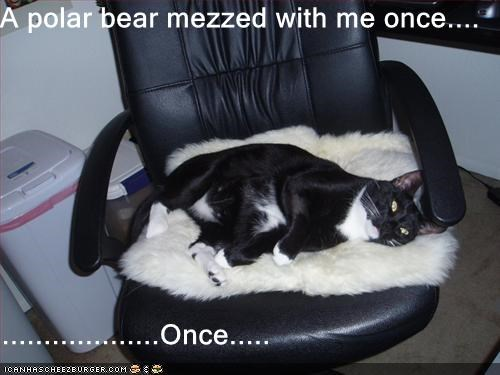 A polar bear mezzed with me once....  ...................Once.....