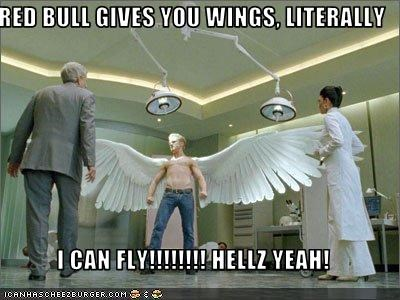 RED BULL GIVES YOU WINGS, LITERALLY  I CAN FLY!!!!!!!! HELLZ YEAH!