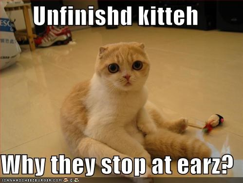 Unfinishd kitteh  Why they stop at earz?