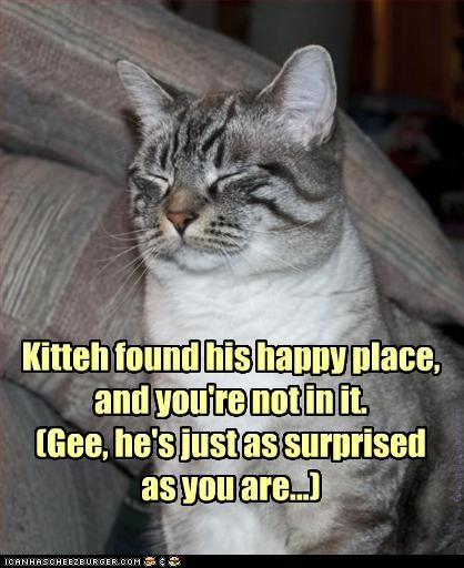 Kitteh found his happy place, and you're not in it. (Gee, he's just as surprised  as you are...)
