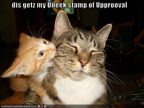 dis getz my Uneek stamp of Upprooval