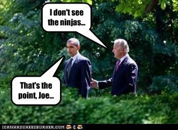 barack obama,democrats,joe biden,ninjas,president,vice president