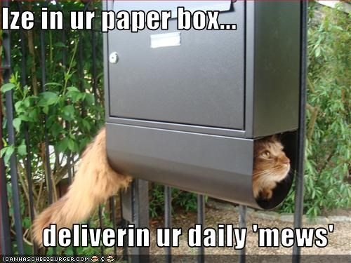 Ize in ur paper box...  deliverin ur daily 'mews'