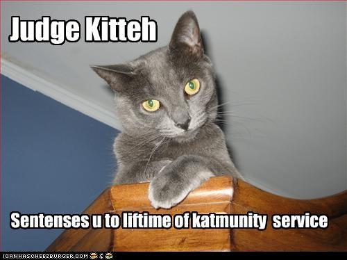 Judge Kitteh