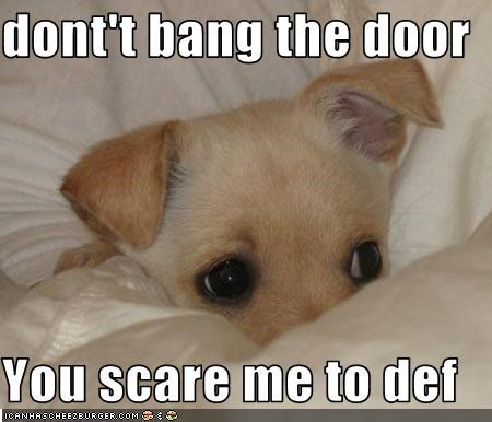 dont't bang the door    You scare me to def
