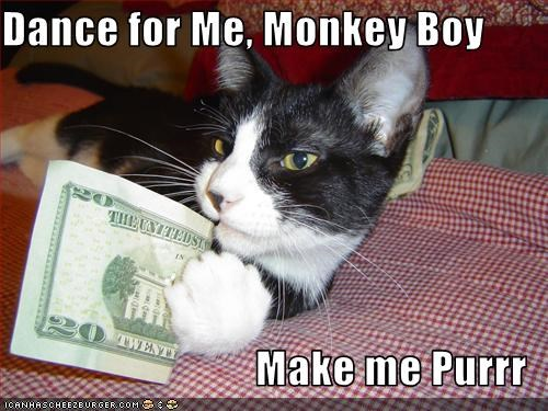 Dance for Me, Monkey Boy  Make me Purrr