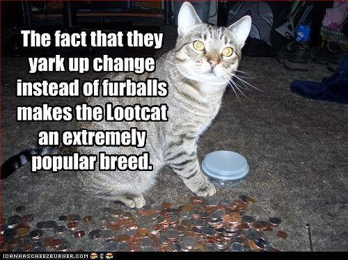 The fact that they yark up change instead of furballs makes the Lootcat an extremely popular breed.