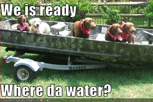 We is ready  Where da water?