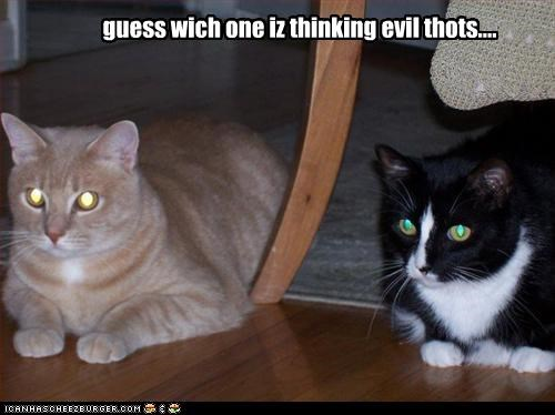 guess wich one iz thinking evil thots....