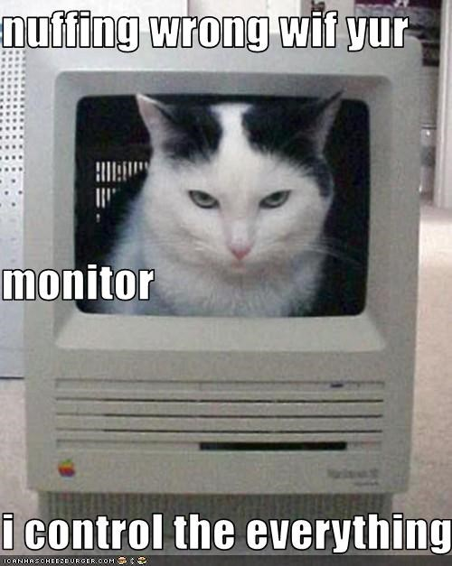 nuffing wrong wif yur monitor i control the everything