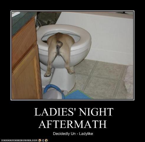 LADIES' NIGHT AFTERMATH