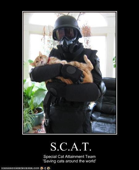 S.C.A.T.