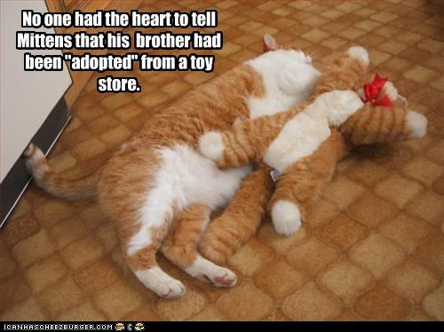 adopted,brother,stuffed animals