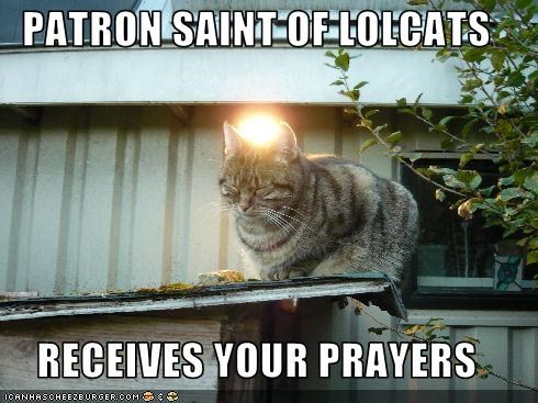 PATRON SAINT OF LOLCATS  RECEIVES YOUR PRAYERS
