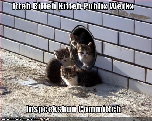 Itteh Bitteh Kitteh Publix Werkx  Inspeckshun Committeh