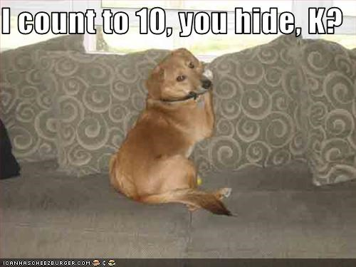 I count to 10, you hide, K?