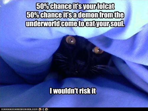 50% chance it's your lolcat 50% chance it's a demon from the underworld come to eat your soul.