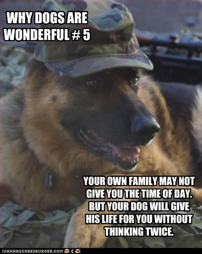 WHY DOGS ARE WONDERFUL # 5