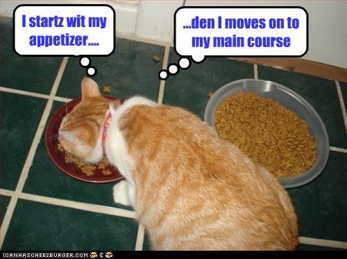 I startz wit my appetizer....