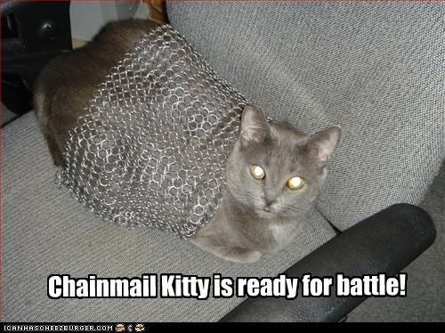 Chainmail Kitty is ready for battle!
