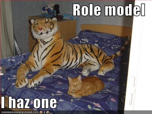 Role model  I haz one