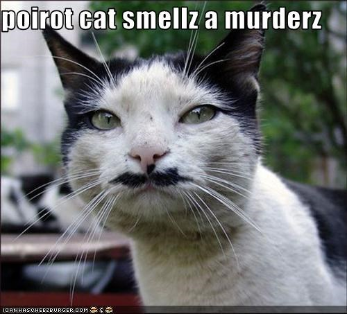 poirot cat smellz a murderz