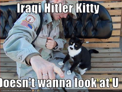 Iraqi Hitler Kitty   Doesn't wanna look at U