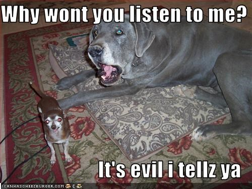 Why wont you listen to me?  It's evil i tellz ya