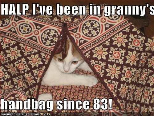 HALP I've been in granny's  handbag since 83!