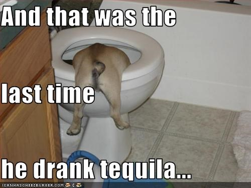 And that was the  last time  he drank tequila...