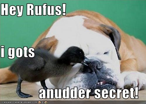 Hey Rufus! i gots anudder secret!