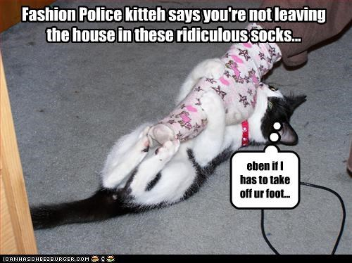 Fashion Police kitteh says you're not leaving  the house in these ridiculous socks...
