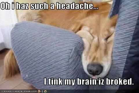 Oh i haz such a headache...  I tink my brain iz broked.