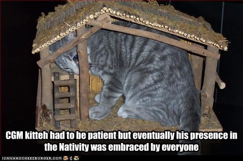 CGM kitteh had to be patient but eventually his presence in the Nativity was embraced by everyone